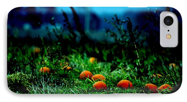 IPhone Case featuring the photograph The Pumpkin Patch by Lesa Fine
