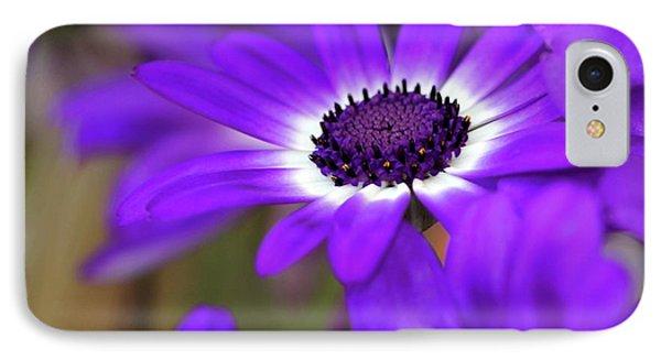 The Purple Daisy Phone Case by Sabrina L Ryan