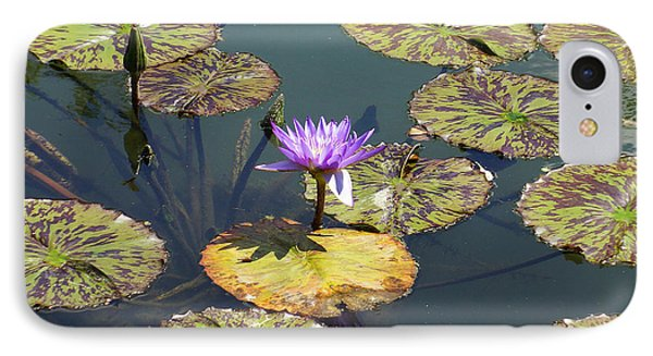 The Purple Water Lily With Lily Pads - Two IPhone Case by J Jaiam