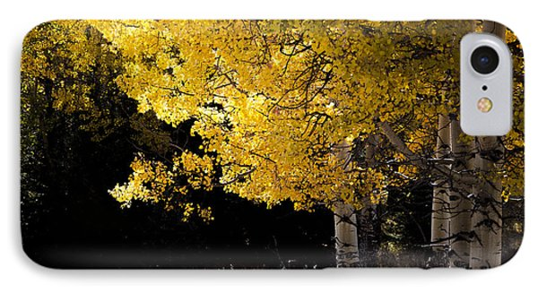 The Quiet Elegance Of Fall IPhone Case by The Forests Edge Photography - Diane Sandoval