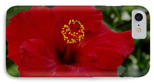 IPhone Case featuring the photograph  Red Hibiscus by James C Thomas