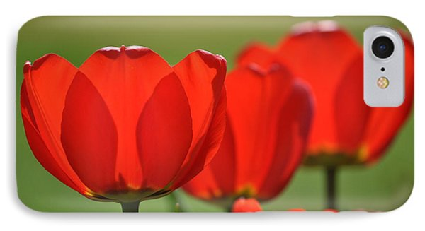 The Red Tulips IPhone Case by Eric Liller