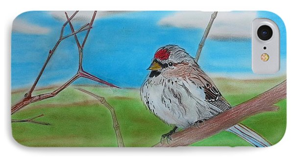 The Redpoll IPhone Case by Tony Clark
