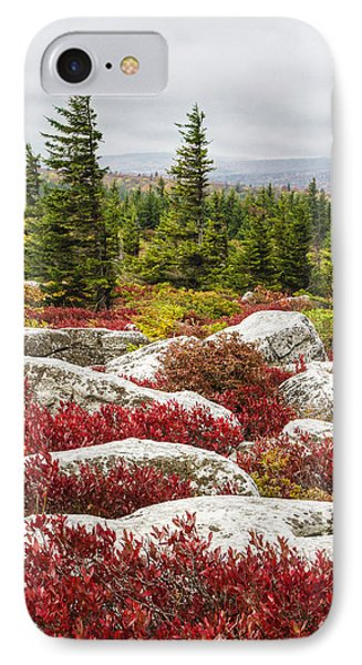 The Reds And Greens Of Dolly Sods Wilderness In West Virginia IPhone Case