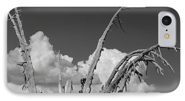 IPhone Case featuring the photograph The Remnant by Terry Garvin