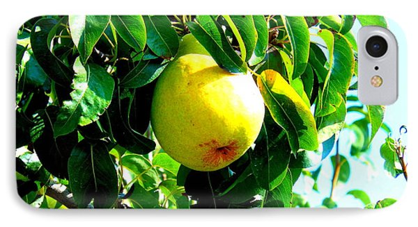 The Ripe Pear Phone Case by Kay Gilley