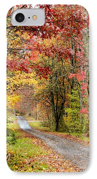 The Road Through Fall IPhone Case by Robert Camp