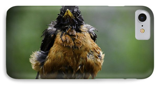 The Robin At 6-58 A.m. IPhone Case