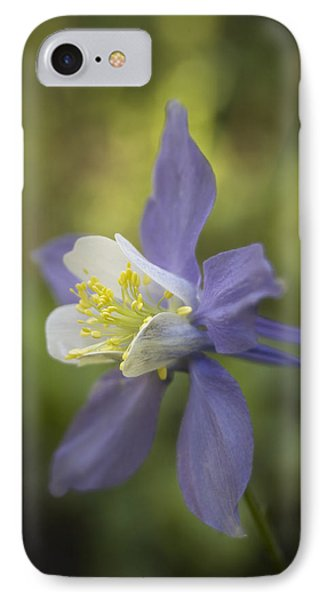 The Romanticist IPhone Case by Morris  McClung