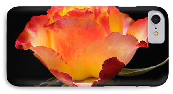 IPhone Case featuring the photograph The Rose by Vivian Christopher