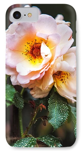 The Rose With Your Name. Park Of De Haar Castle Phone Case by Jenny Rainbow