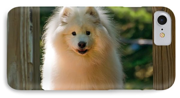 The Samoyed Smile IPhone Case by Lois Bryan