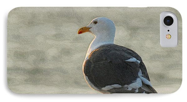The Seagull IPhone Case by Ernie Echols