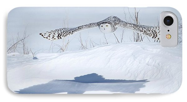 The Silent Hunter IPhone Case by Heather King