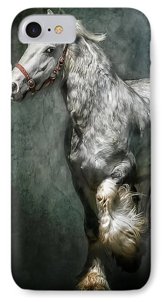 The Silver Gypsy IPhone Case by Brian Tarr