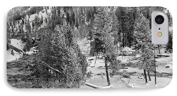 The Snow Tree's IPhone Case
