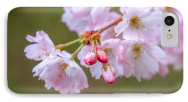 The Softness Of Spring IPhone Case by Ken Stanback