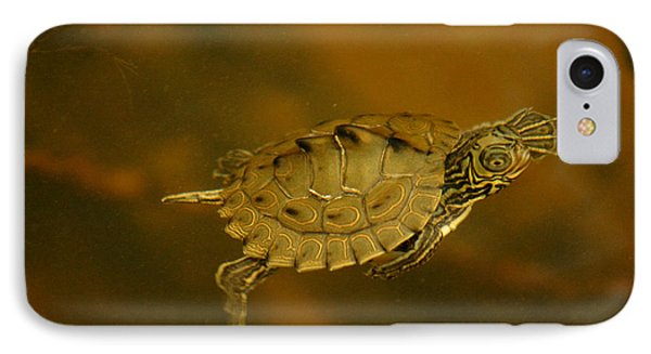 The Southeastern Map Turtle IPhone Case