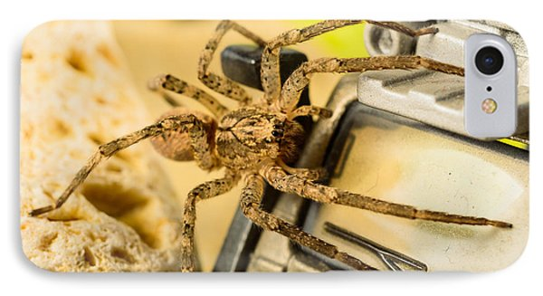 The Spider Series Vii IPhone Case by Marco Oliveira