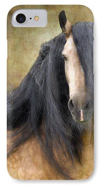 The Stallion Photograph By Fran J Scott