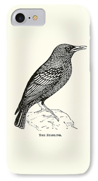 The Starling IPhone 7 Case