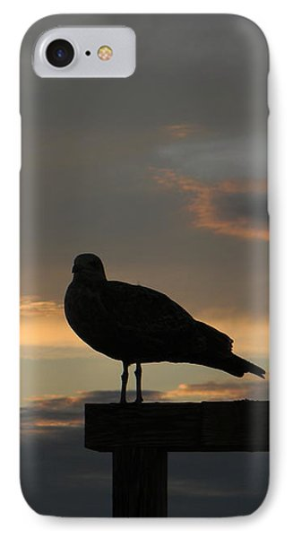 The Sunset Perch IPhone Case by Jean Goodwin Brooks