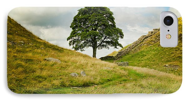 The Sycamore Gap Along Hadrians Wall IPhone Case
