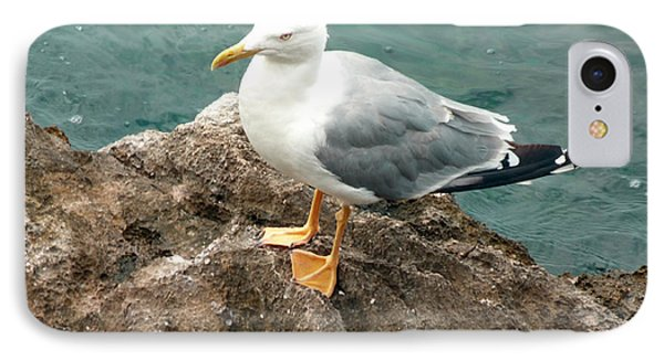 The Thinker - Seagull Photography By Giada Rossi IPhone Case by Giada Rossi
