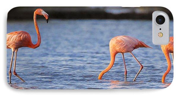 The Three Flamingos IPhone Case by Adam Romanowicz