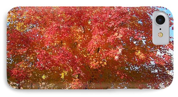The Tree By The Church - Photograph IPhone Case