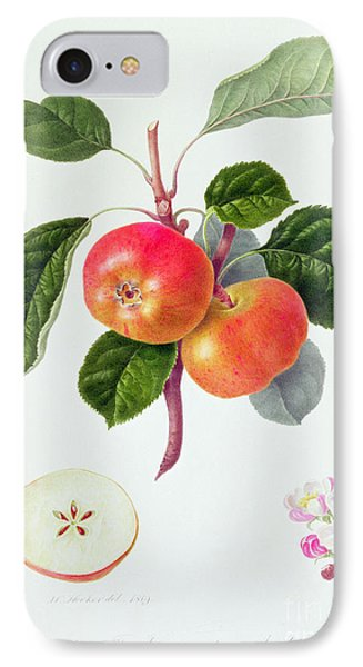 The Trumpington Apple IPhone Case by William Hooker