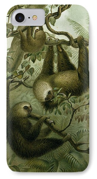 The Two-toed Sloth IPhone Case