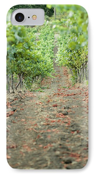 The Vines IPhone Case by Ariane Moshayedi