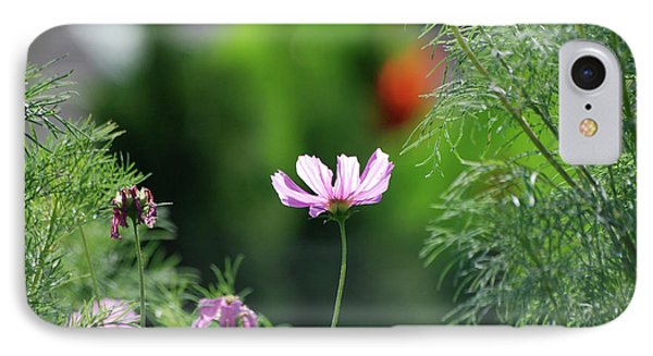 IPhone Case featuring the photograph The Warmth Of Summer by Thomas Woolworth
