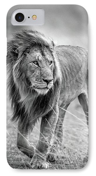 Lion iPhone 7 Case - The Wary Champion by Jeffrey C. Sink