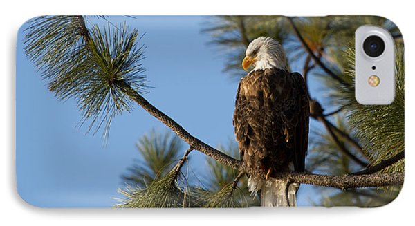 The Watchman IPhone Case by Beve Brown-Clark Photography