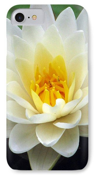 IPhone Case featuring the photograph The Water Lilies Collection - 03 by Pamela Critchlow