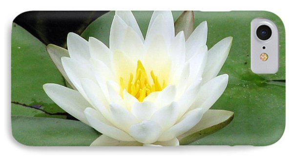 IPhone Case featuring the photograph The Water Lilies Collection - 04 by Pamela Critchlow