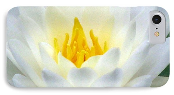 IPhone Case featuring the photograph The Water Lilies Collection - 05 by Pamela Critchlow