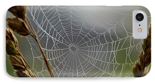 IPhone Case featuring the photograph The Web by Kerri Farley