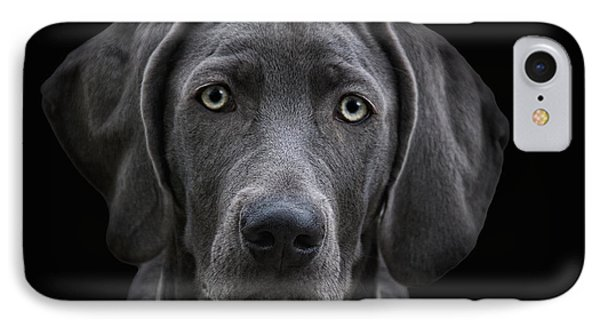 The Weimaraner IPhone Case