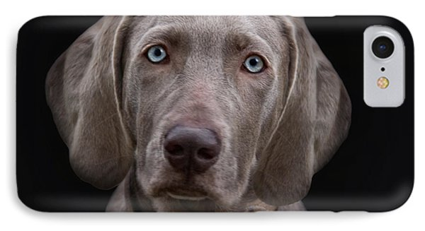 The Weimaraners Sister IPhone Case by Joachim G Pinkawa