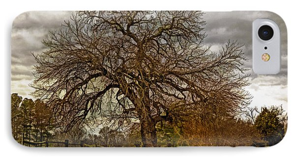 The Welcome Tree IPhone Case by Jerry Gammon