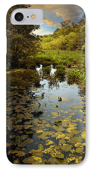 The Wetlands IPhone Case by Jessica Jenney