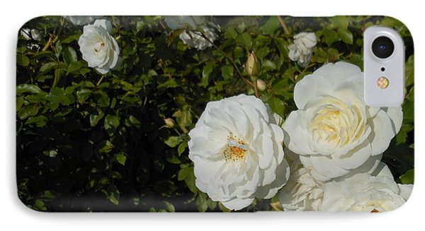 The White Rose Is A Dove Phone Case by Kay Gilley