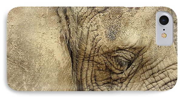 The Wise Old Elephant IPhone Case by Nikki McInnes