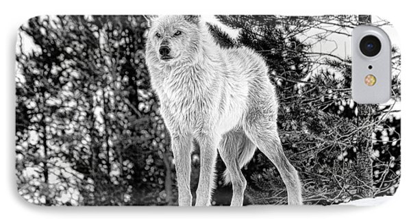 The Wolf  IPhone Case by Fran Riley