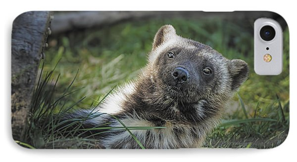 The Wolverine Skunk Bear Happy Face Phone Case by LeeAnn McLaneGoetz McLaneGoetzStudioLLCcom