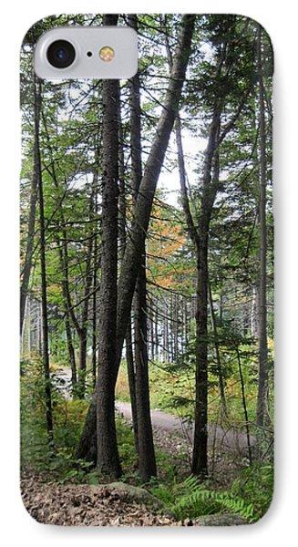 The Woodland Coastal Maine IPhone Case