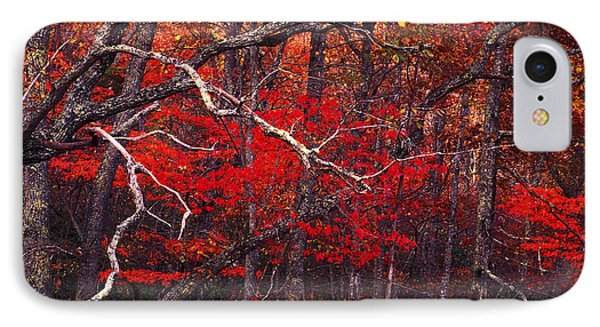 The Woods Aflame In Red Phone Case by Paul W Faust -  Impressions of Light